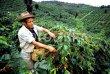 画像14: カップの中の世界旅行「コーヒー定期便」お得にレアもの! (14)